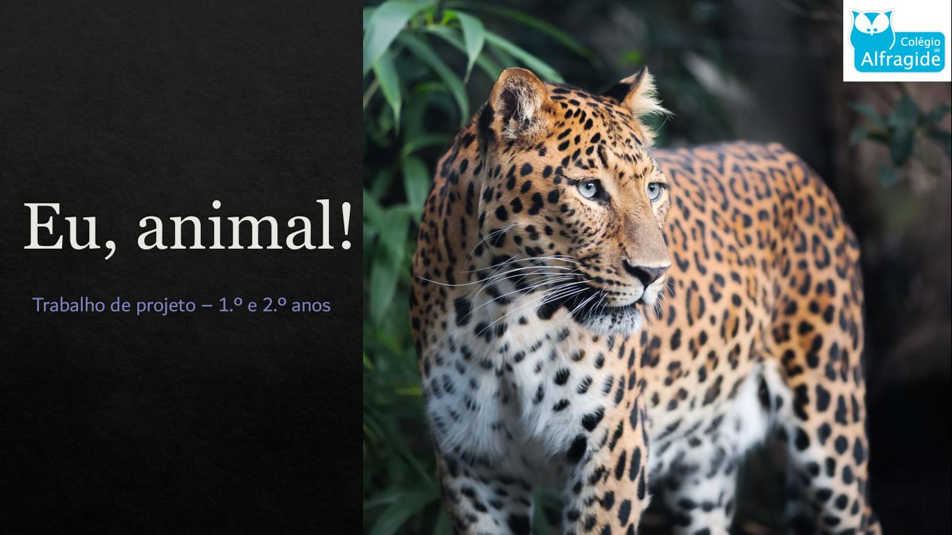 "Projeto ""Eu, animal! """