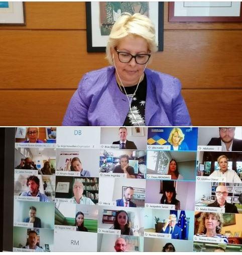 Video Meeting: European Vocation Skills Week
